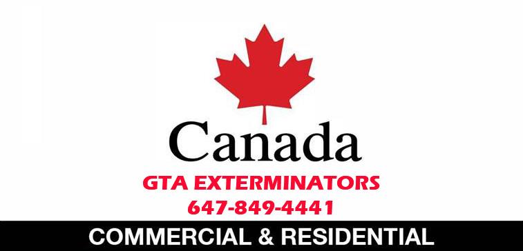 GTA-Exterminators